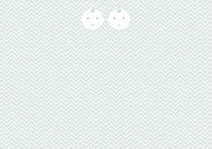 tweeling-op-zigzag-patroon-2
